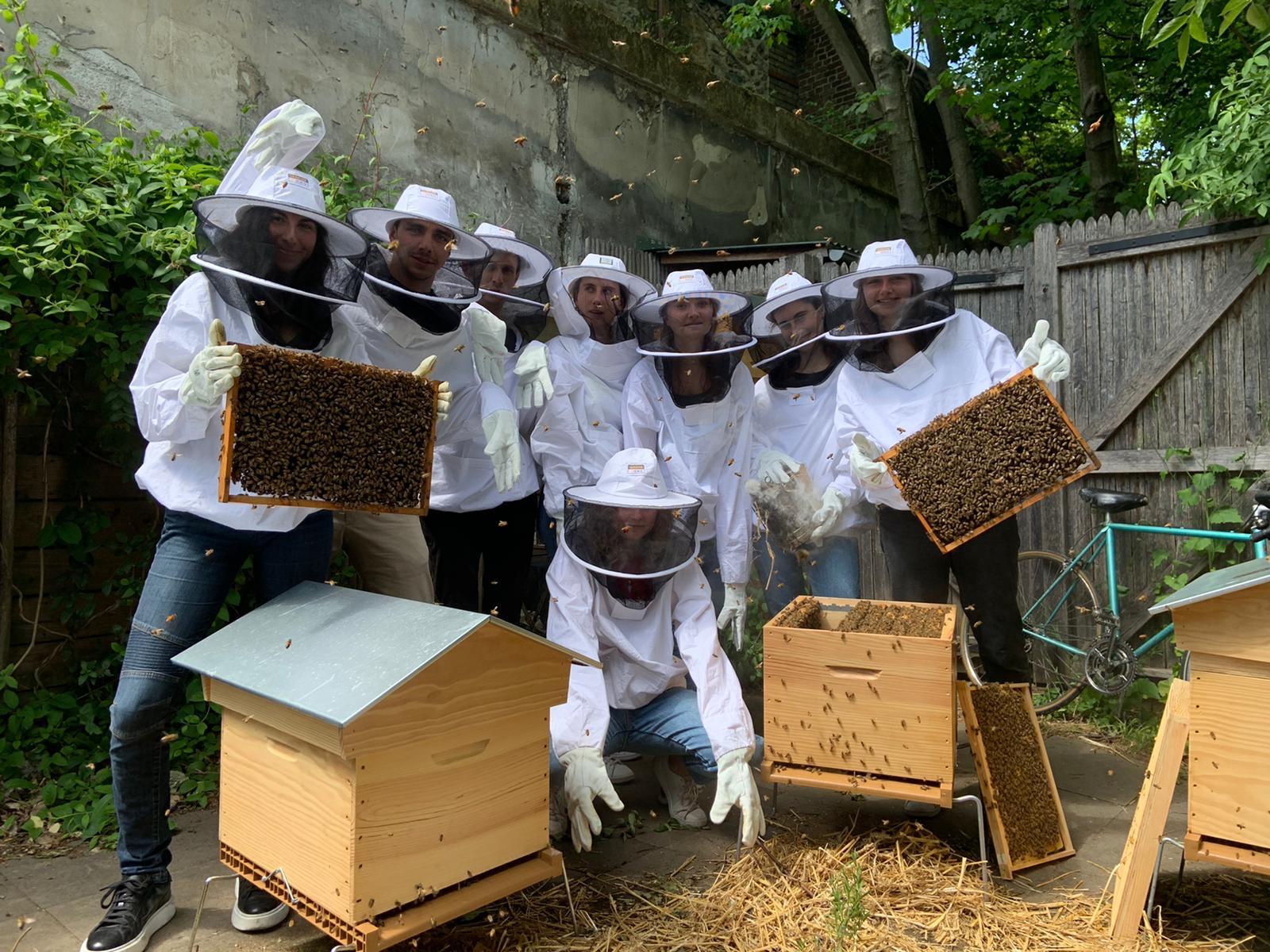 atelier apiculture paris