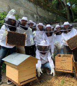 atelier-initiation-apiculture-villette1